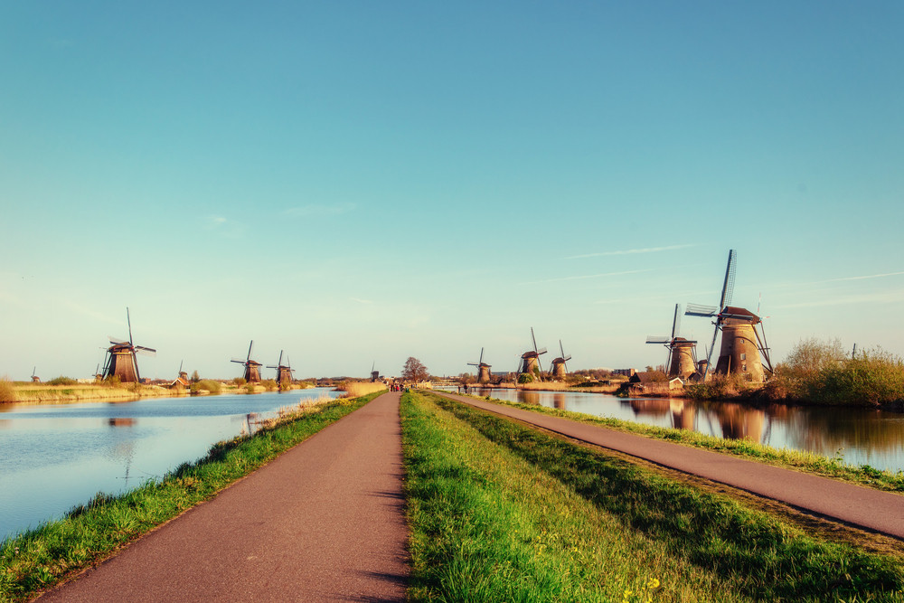 The Traveler's Guide to Driving in the Netherlands
