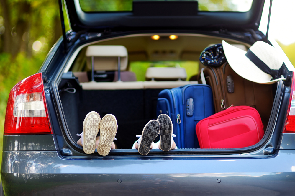 10 Best Car Trunk Storage Systems - Main image