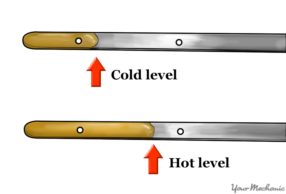 dipstick showing correct fluid levels