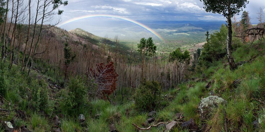 Coronado Trail Scenic Byway Arizona