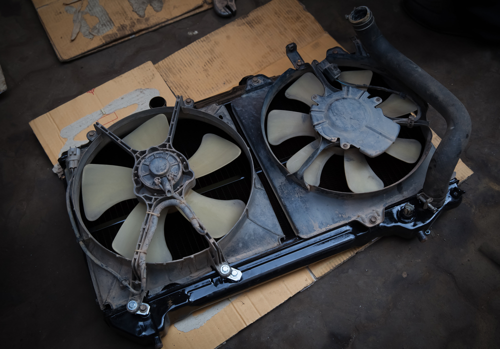 Cooling/Radiator Fan Motor