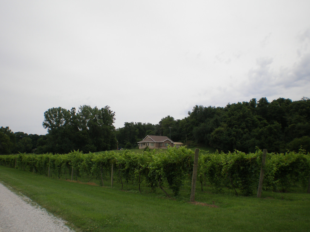 Wabash River Wines Illinois