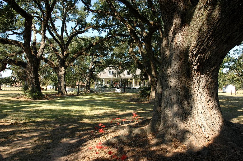 Cane River Heritage Trail Louisiana