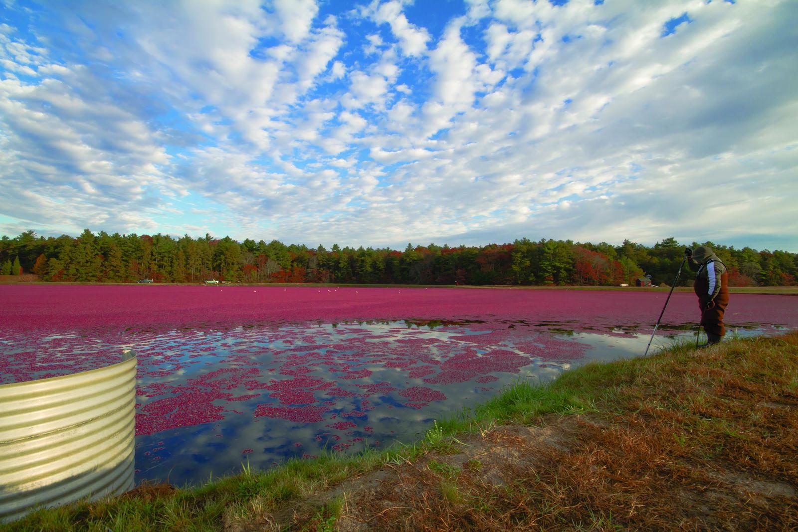Plymouth County Massachusetts