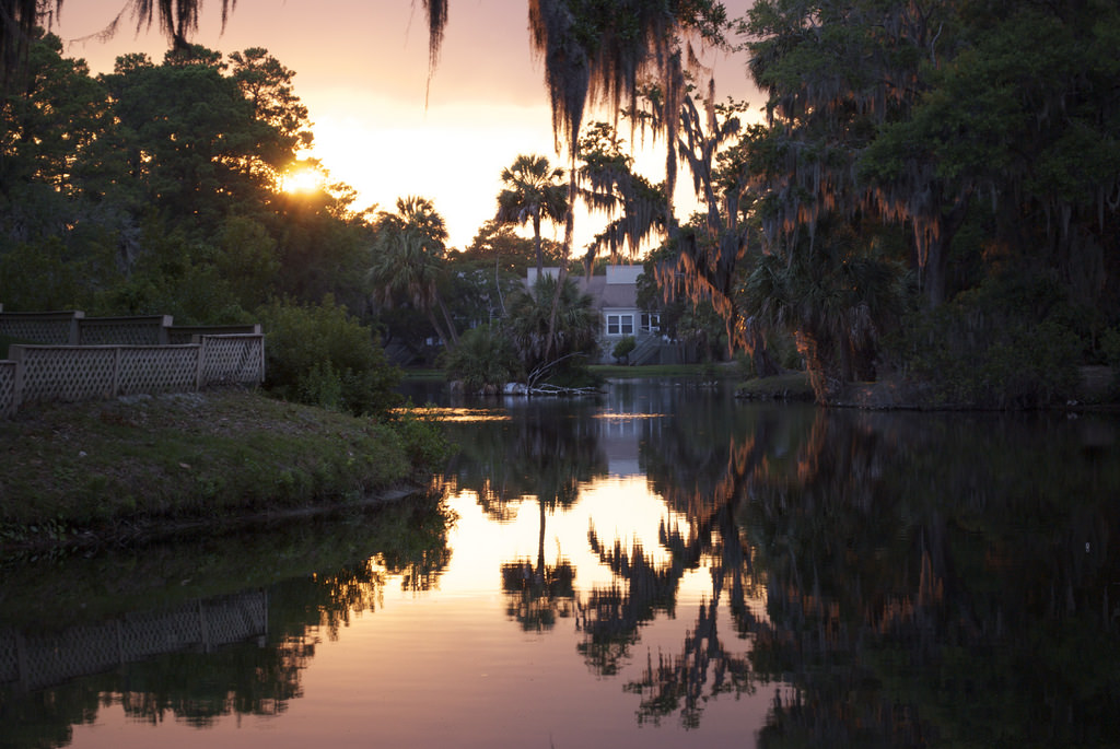 Edisto Island Tour South Carolina