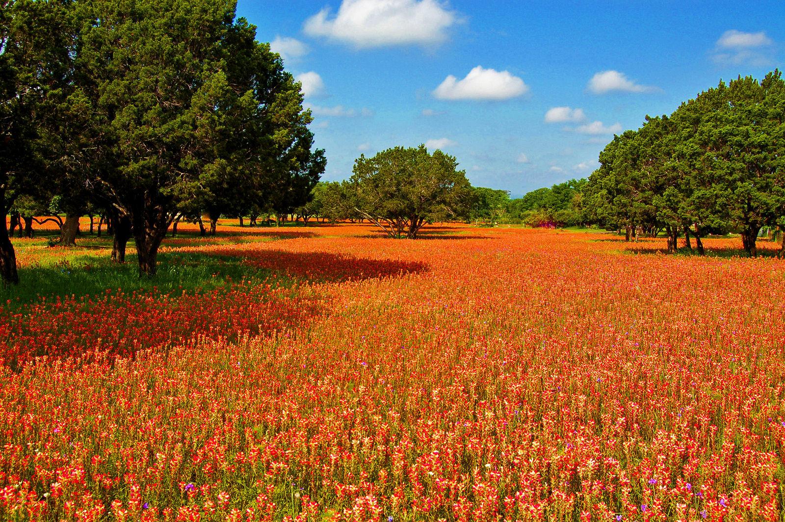 Texas Hill Country Texas