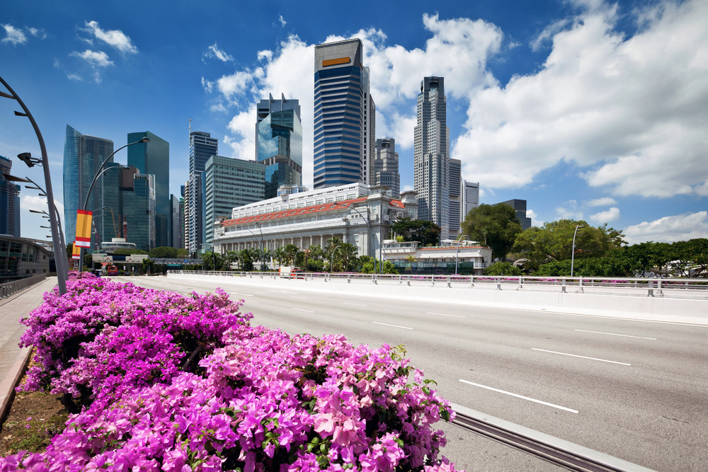 The Traveler's Guide to Driving in Singapore