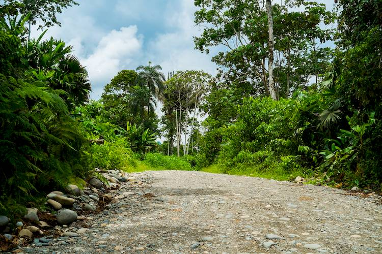 The Traveler's Guide to Driving in Ecuador