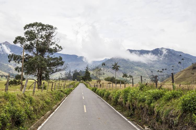 The Traveler's Guide to Driving in Colombia