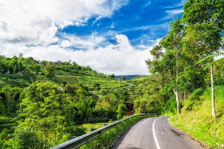 The Traveler's Guide to Driving in Indonesia