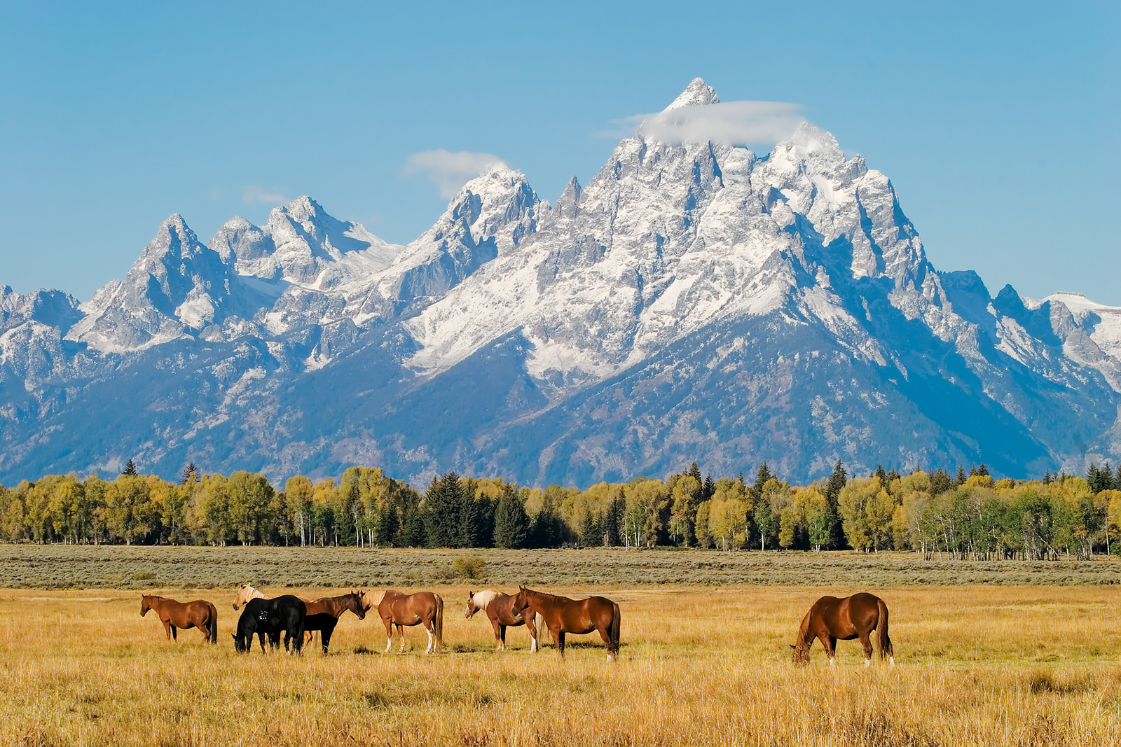 Top 10 Scenic Drives In Wyoming Yourmechanic Advice